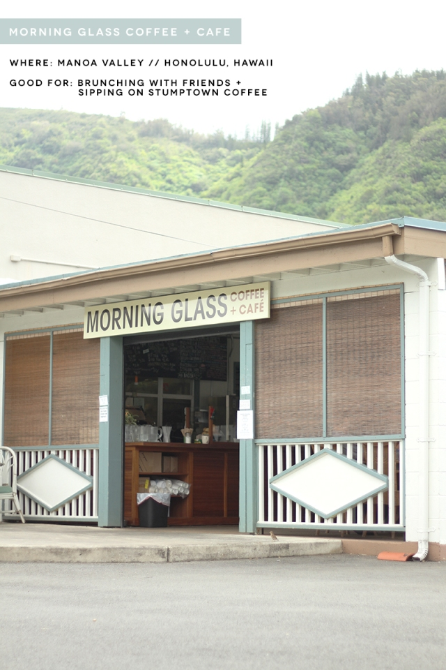 morningglass20
